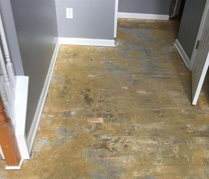 Hardwood Floors Damaged by Storm Flood After