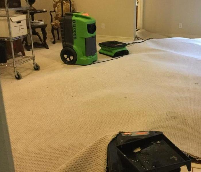 Commercial Dehumidifiers for Carpet Cleaning