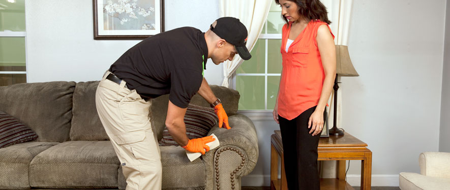 Panthersville, GA carpet upholstery cleaning