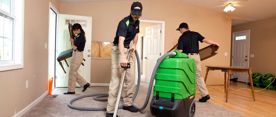 Panthersville, GA cleaning services